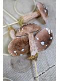 1 champignon des bois 8cm