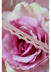 10M dentelle VIEUX rose 10mm Margot