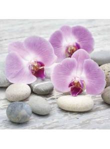 20 Serviettes Orchidées Zen