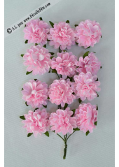 12 pivoines rose