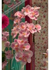 1 Branche d'orchidées LILI ROSE