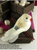 2 oiseaux inséparables écru