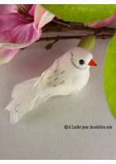 2 oiseaux inséparables blanc