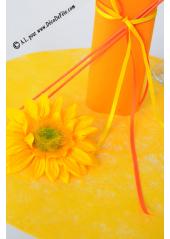 10 Sous assiettes FIBRE mangue