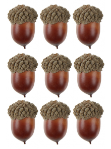10 GLANDS marron 3.5cm