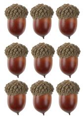 10 GLANDS marrons 3.5cm