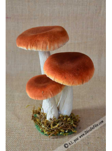 3 champignons brun 18cm
