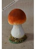 1 champignon brun bolet 12cm