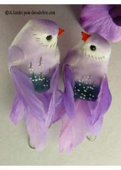 2 oiseaux inséparables parme
