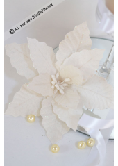 1 Poinsettia lin blanc