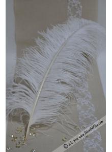 1 Grande plume d'autruche IVOIRE
