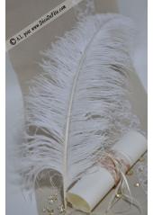 1 Grande plume d'autruche BLANCHE