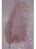 1 Grande plume d'autruche VIEUX ROSE