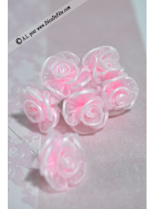 6 Fleurs organza roses