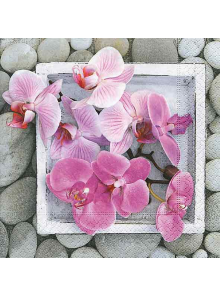 20 Serviettes délicates orchidées
