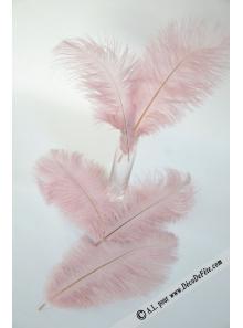 5 plumes d'autruche VIEUX ROSE 20cm