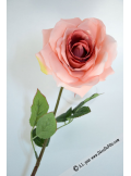 1 rose  Mylène rose saumon