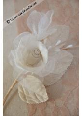1 rose bouton coton MILADY