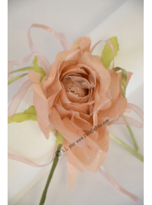 1 petite rose JULIA taupe