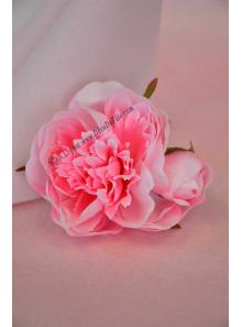 1 pivoine rose