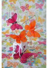2 papillons Wendy bordeaux