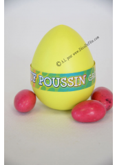 1 oeuf de POUSSIN GROSSISSANT