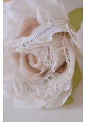 1 rose JEANNE dentelle ivoire/taupe