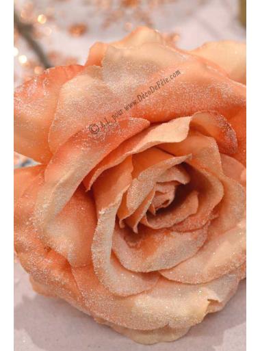 1 Rose ROMY pêche