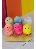 6 poussins colorés