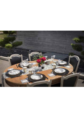 10 Assiettes jetables Reine