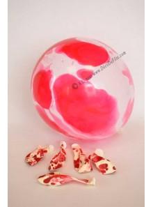 6 ballons marbrés rouge