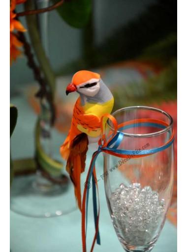 1 petit perroquet orange