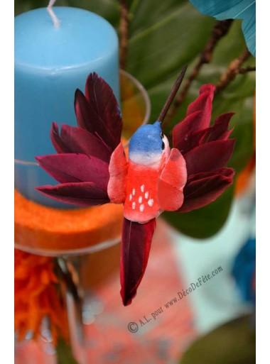 1 colibri rouge