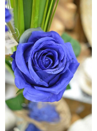 1 rose BLEU roy