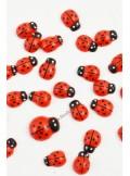 24 Petites coccinelles rouges
