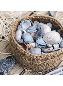20 Serviettes panier de coquillages