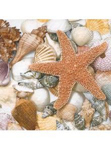20 Serviettes étoile de mer