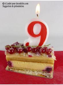 1 Bougie anniversaire chiffre 9
