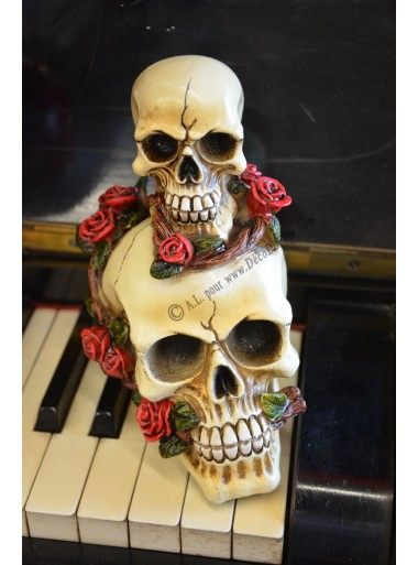 1 tête de mort à la rose