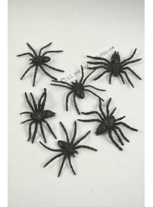 6 araignées noir