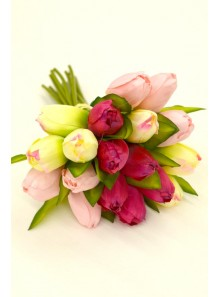 1 bouquet de 18 TULIPES roses