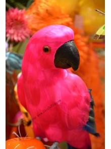 1 perroquet EXOTIQUE fushia