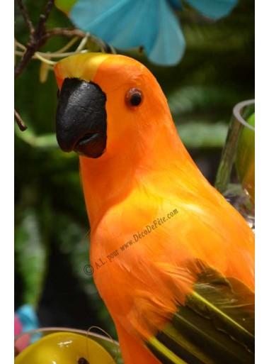 1 perroquet EXOTIQUE orange