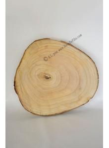 1 tranche de bois GEANTE 35cm