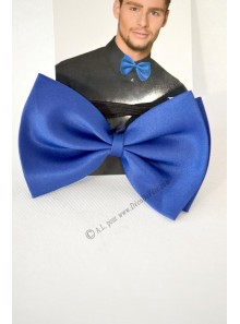 1 noeud papillon bleu