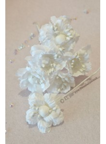 6 Fleurs de pivoine blanche