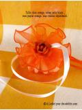 6 tulles Sissi orange