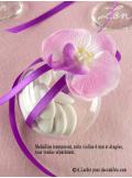 6 Orchidées rose