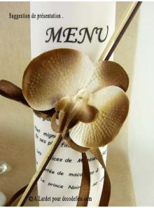 6 Orchidées chocolat