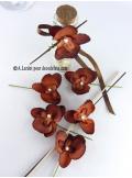 6 Petites Orchidées PERLE chocolat